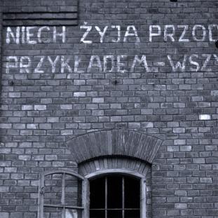 fot. Dariusz Żukowski